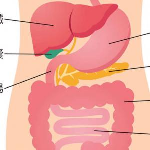 【ある日突然外国で...】胃炎それとも胆嚢の仕業?