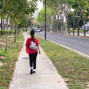 【ある日突然外国で...】事故から10ヵ月目の散歩❤️