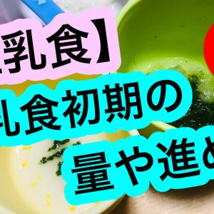 【離乳食】初期(5~6ヶ月)の量や進め方の実際①【1回食】