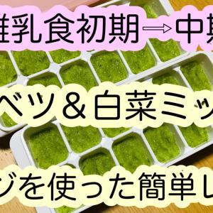 【離乳食】キャベツ白菜ミックス!初期⇒中期への移行レシピ