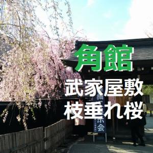 角館の武家屋敷と枝垂れ桜_秋田県_東北一周