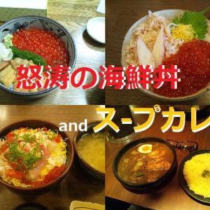 海鮮丼を食べまくる、そしてスープカレーも_北海道編