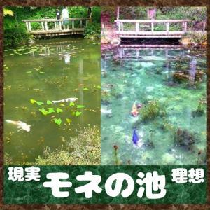 モネの池‼理想と現実!?_岐阜_北陸+α編