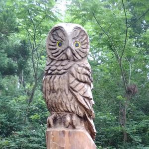 関東ふれあいの道・東京1【前半】フクロウの森