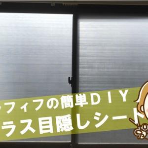 【アラフィフの簡単DIY】透明の窓ガラスに目隠しシートを貼ってみました!