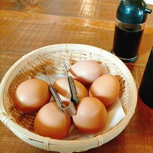 「小次郎の里」卵好きさん、いらっしゃ~い