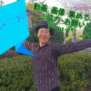 みんなで作ろう!大道芸人GEN(ジェン)のPV(プロモーションビデオ)、きょどちゃんとのコラボ企画