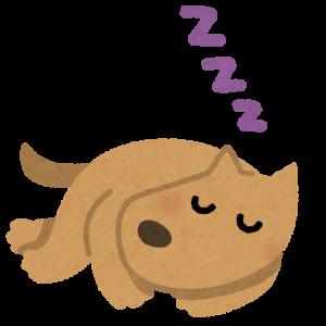 やっと眠ってくれた