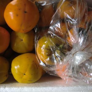 渋柿の食べ方