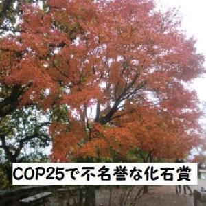 COP25で不名誉な「化石賞」