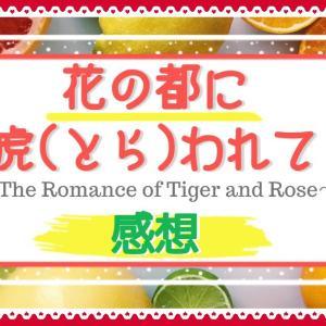 《花の都に虎(とら)われて》の感想!ネタバレなしとあり。強引な結婚から始まる恋!?主役から脇役までコメディ部分が楽しいドラマ!