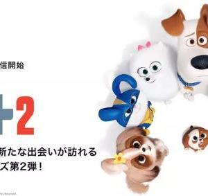 年末年始、正月ひまなら無料で映画「ペット2」を見よう【裏技あり】