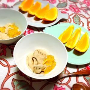 手作りアイスクリームのレシピ チョコ