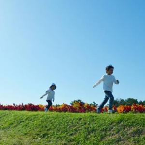 子供にあわせてサッカーを例えで教える