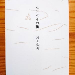 川上弘美作  センセイの鞄  (文春文庫) ゆっくりゆっくりと進む恋