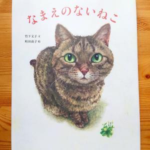 なまえのないねこ (オッサン保育士の読み聞かせ絵本3)