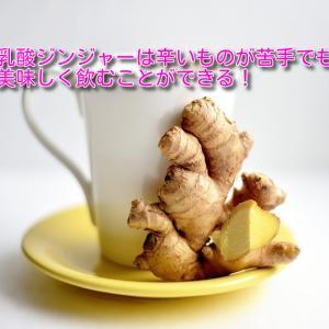 乳酸ジンジャーの美味しい飲み方を紹介!【乳酸菌入り生姜シロップ】