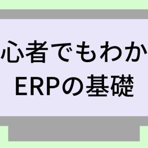 ERPをIT初心者でもわかるように解説
