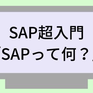 「SAPとは?」を初心者にも分かりやすく4分で解説します