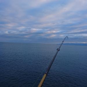 02/0101  新年釣り始め!富山県釣果!