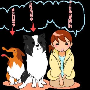 【はじめに】『まったり犬育』のススメ