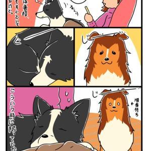 【犬漫画】のんちゃん、どかない