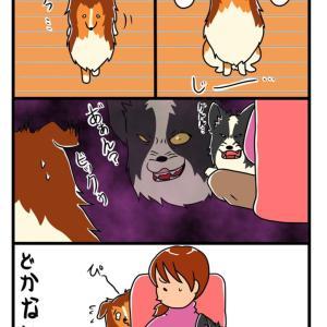【犬漫画】のんちゃん、絶対にどかない
