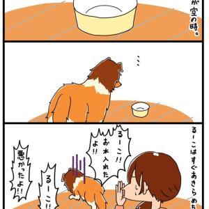 【犬漫画】諦めるなあぁっ!!!(修造