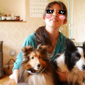 のんちゃん8歳のお誕生日は飼い主に絡まれ大変でした