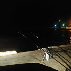 石狩 古潭漁港 カレイ釣り。