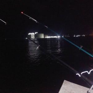 サケ釣りじゃなくて シャコ釣り(石狩湾新港)