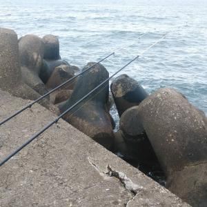 チビばかり色々釣れる日。(網走近郊・投釣り)