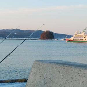 釣れない場所で釣ってみる。(網走港・投釣り)