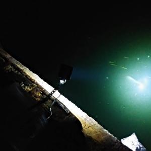 巨大魚とイカの奪い合い。(網走マメイカ・第3戦)