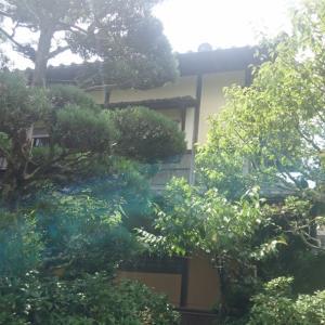 奈良の大仏と志賀直哉旧居