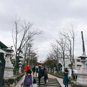 鎌倉散歩3@11月備忘録(報国寺)