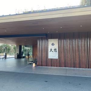 2020箱根お籠り旅行 3(お宿お部屋編)