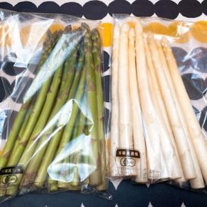 白&緑のアスパラガス@ふるさと納税