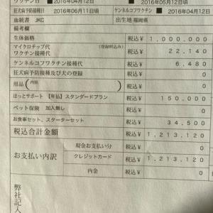 ペッツファーストの子会社「ペットがいちばん保険」が行政処分!