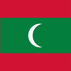 【モルディブ国旗の意味と由来】緑の色はなんとココヤシ?