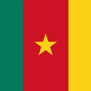 【カメルーン国旗の意味と由来】未承認のアンバゾニア共和国も!