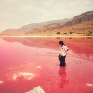 【絶景】世にも奇妙なピンクの湖