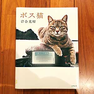 【 ボス猫 】岩合光昭:著は「哲学」と「天然」のはざまに
