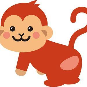猿には何回言っても理解されない