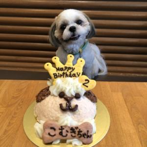 Happy Birthday☆彡