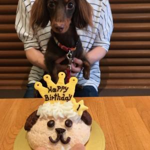 Happy Birthday Villyくん!!