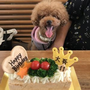 HAPPY BIRTHDAY 大吾くん!!