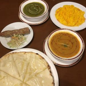 妄想トラベル part2 インドでカレーを食べる