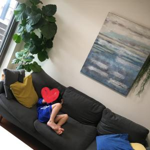 ソファーのカバーを交換しました