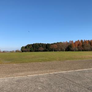 風の人公園⁈